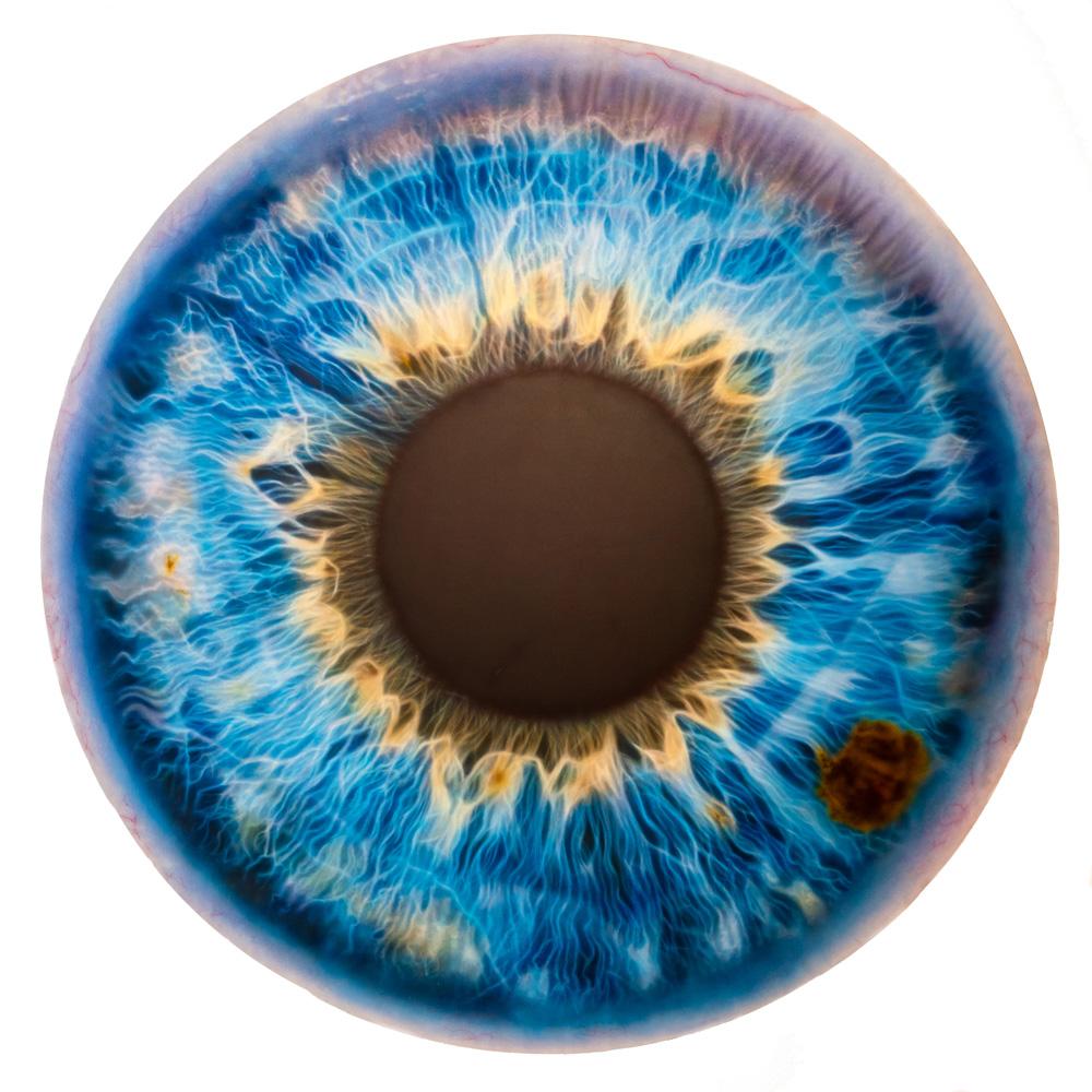 Marc Quinn eye